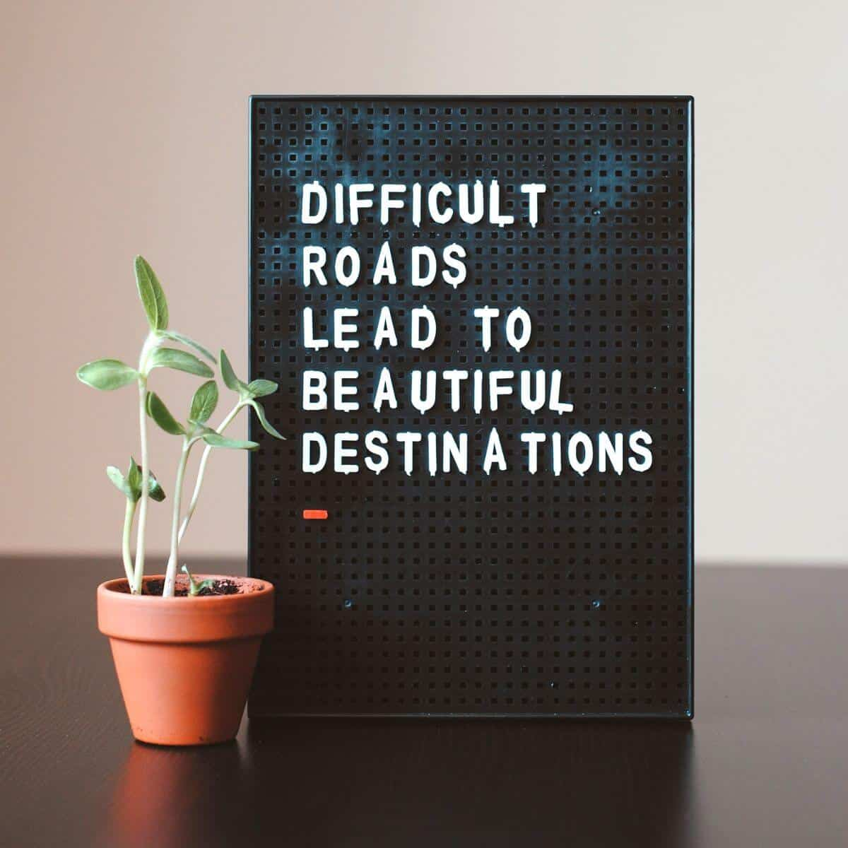 A plant and a sign with a quote on a table.