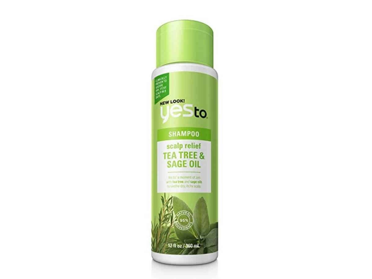 Yes To tea tree oil shampoo.