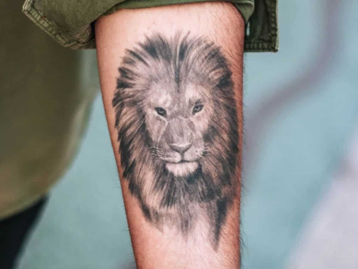 Lion tattoo on a person's arm.