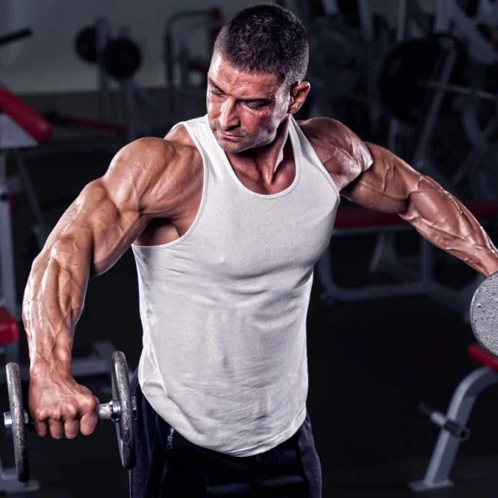 Person doing a dumbbell lateral raise exercise.