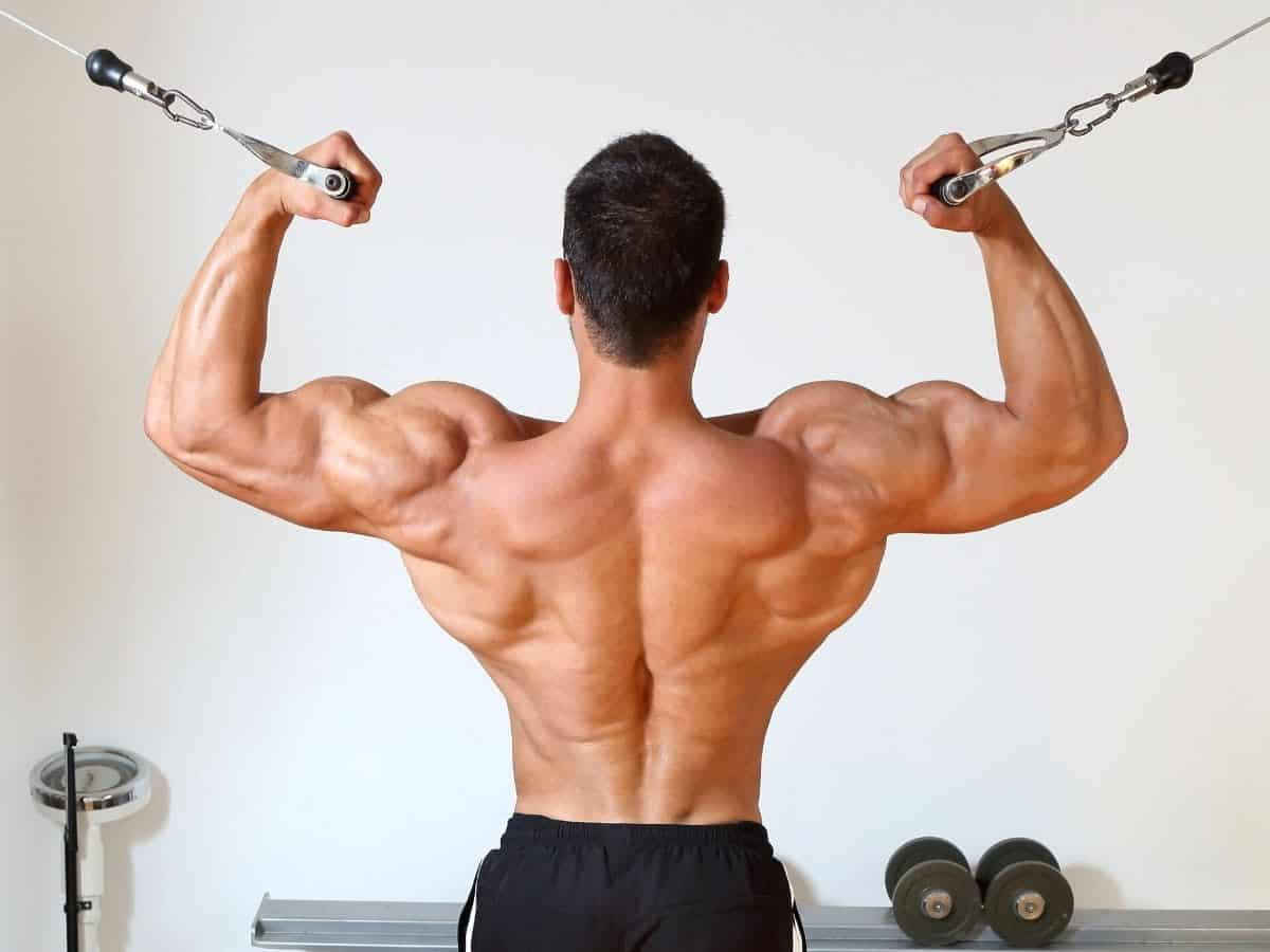 Back of a person doing overhead cable curls.