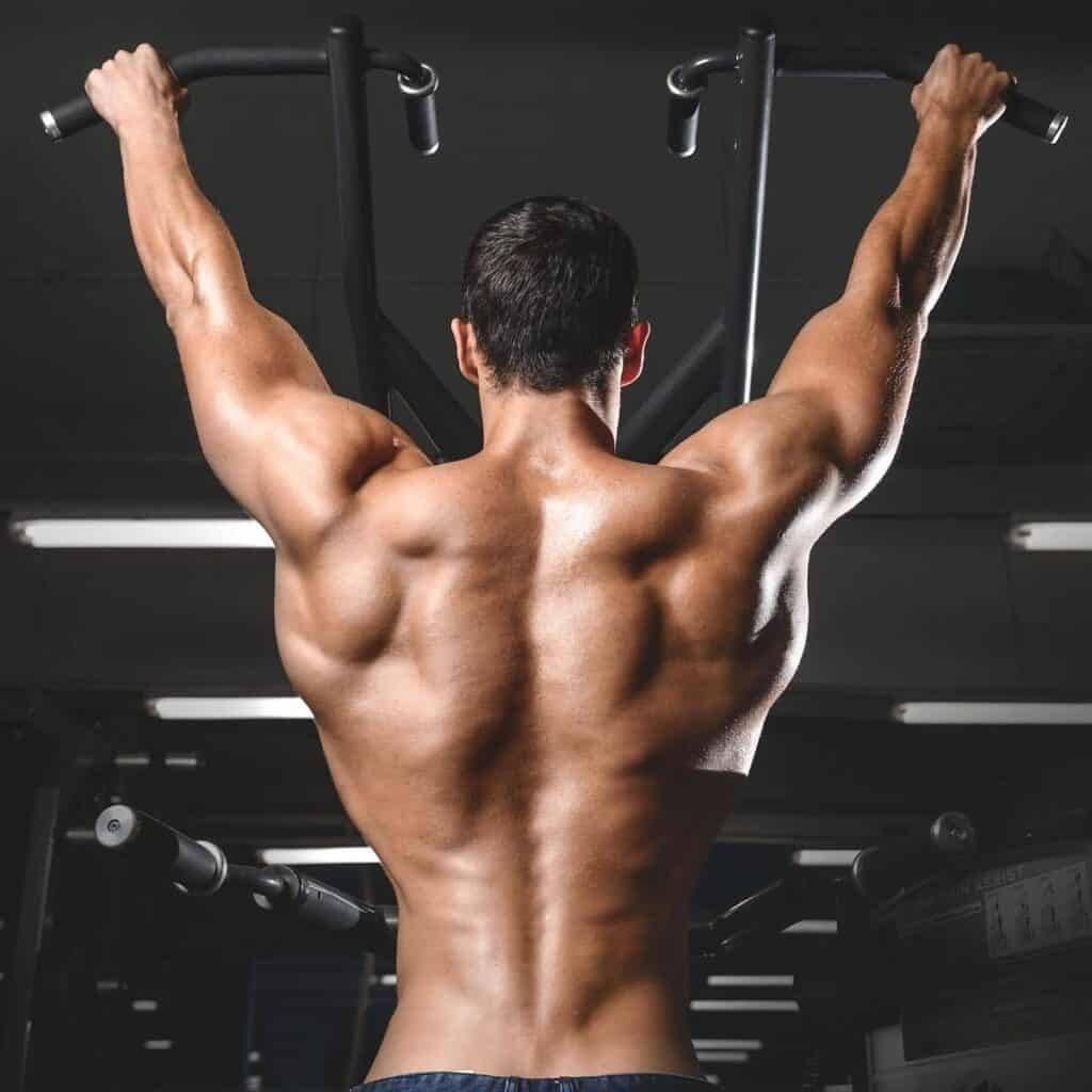 Person's back muscles while doing a pull-up.